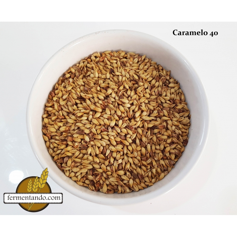 Malta Caramelo 40 L -– Briess - Costal de 22.68kgs