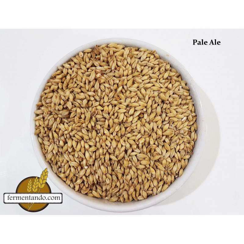 Malta Pale Ale Americana - Rahr - Costal de 25 kgs